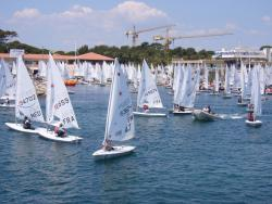 Les régates de Laser peuvent réunir plus de 450 bateaux !